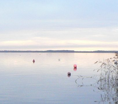the lake de Lacanau in the morning / le lac du Lacanau au matin