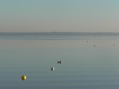 the lake de Lacanau within a footstep walk / le lac de Lacanau à 2 pas du Tiny House
